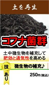 コフナ菌堆肥『蘇れ培養土』