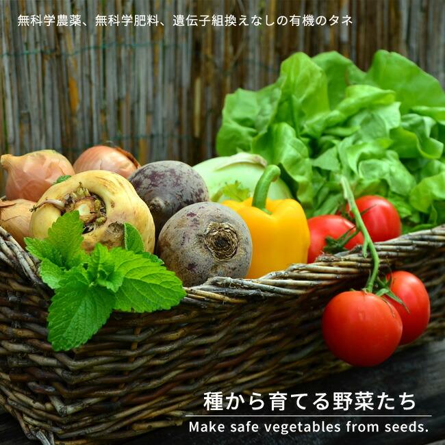 野菜 タネ
