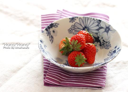 13.5cmフルーツ小鉢