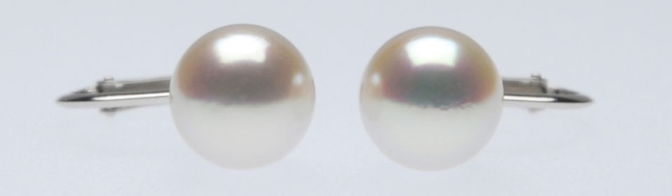 オーロラ花珠 アコヤ真珠イヤリング(またはピアス) S516021 アップ