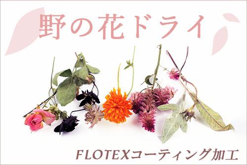 野の花ドライ