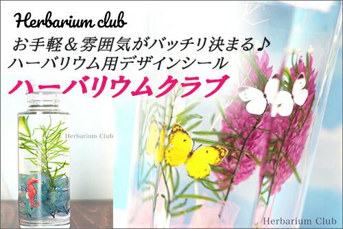 ハーバリウムクラブ