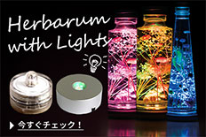 ハーバリウム ライト