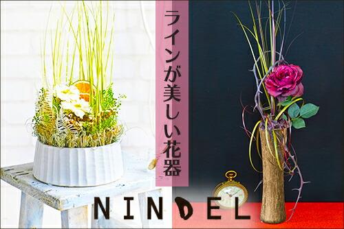 NINDEL