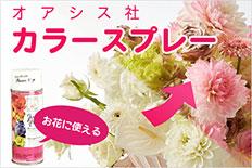 お花に使えるカラースプレー