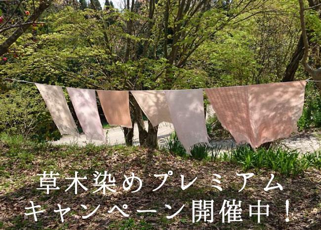 草木染キャンペーン