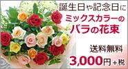 カラフルなバラ15本の花束