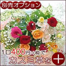 【オプション】生花のギフトにカスミ草を追加しませんか?