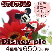 【オプション】ディズニーキャラクターをお花に添えて...
