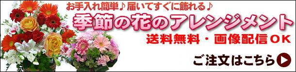 スタイルが選べる季節の花のアレンジメント