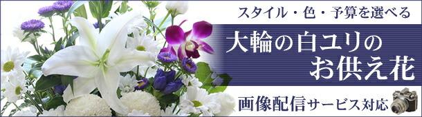 大輪系白ユリを使ったお供え花