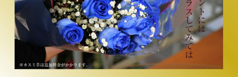 お誕生日やクリスマス等のイベントには華やかにカスミ草をプラスしてみてはいかがですか。 青いバラ 青バラ 青い薔薇 青薔薇