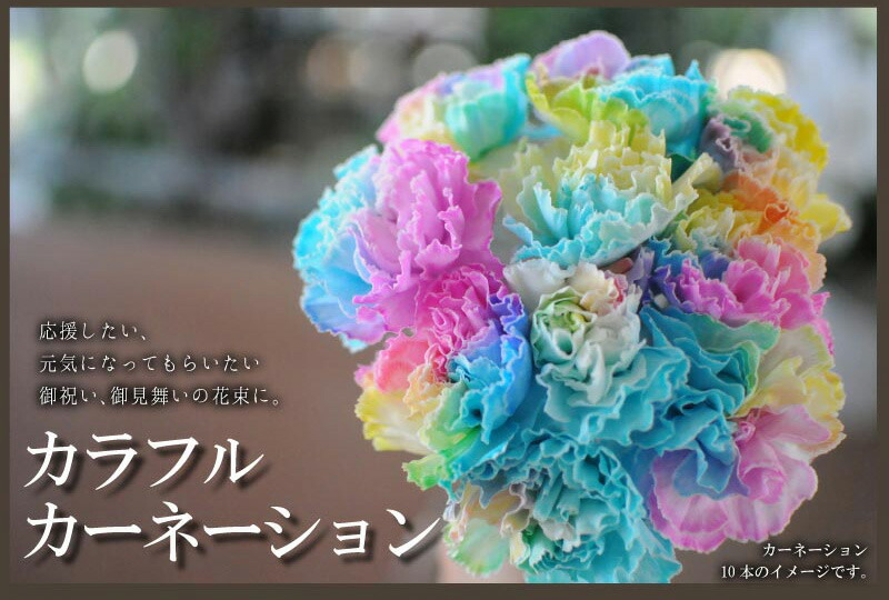 hanako | Rakuten Global Market: Carafrcarnation bouquet ...