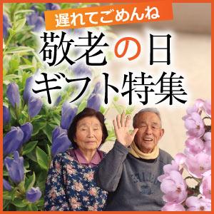 2017敬老特集