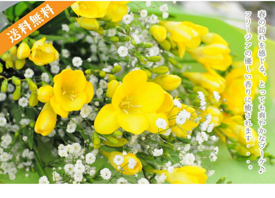ふんわりと優しい春のブーケ。フリージアとカスミ草をミックスしてお届けです。