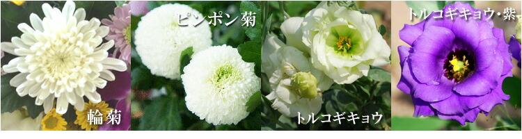 使用花種類