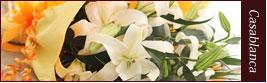 白ユリ(カサブランカ)花束はこちら