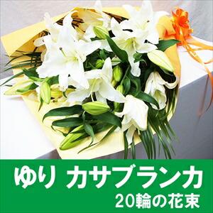 カサブランカ花」