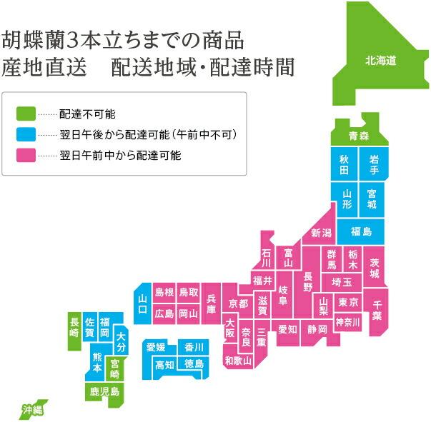 産地直送3本立ち胡蝶蘭 配送地域地図