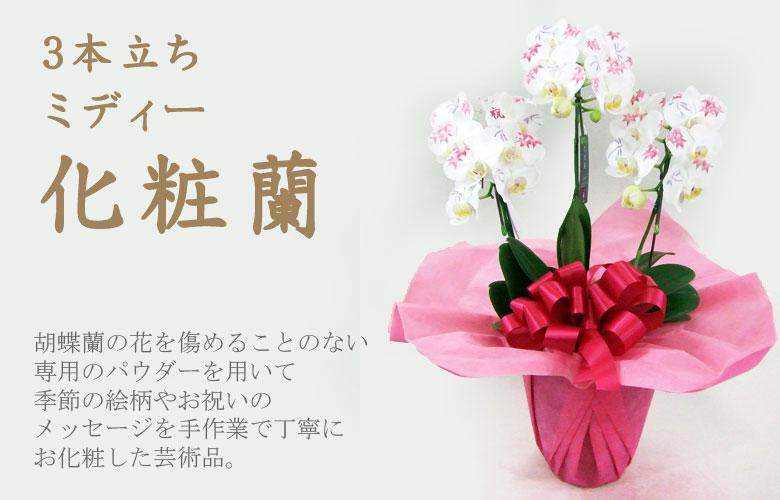 3本立ちミディー化粧蘭 化粧欄とは、最高級の胡蝶蘭に専用のパウダーで一本づつ手作業で文字や模様の「お化粧」を施した胡蝶蘭のことです。