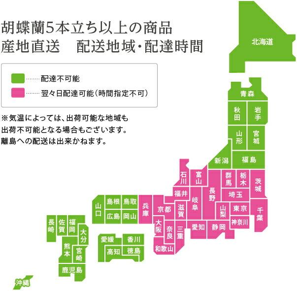 胡蝶蘭5本立ち以上 産地直送胡蝶蘭配送地域地図
