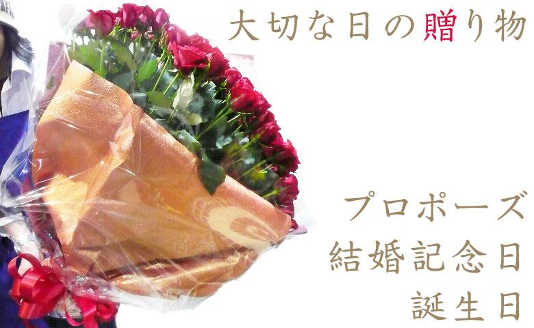 赤いばらの花束 100本 プロポーズ、記念日、結婚記念日、誕生日祝いの特別な日のギフト