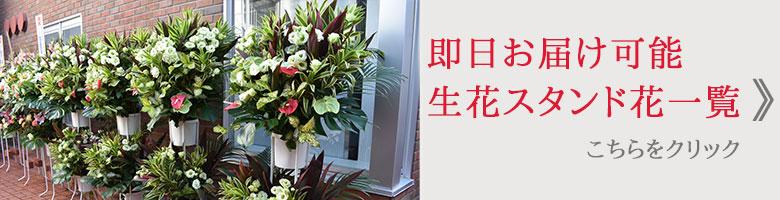 即日配達 送料無料、厳選されたお花屋さんから手渡し届け スタンド花