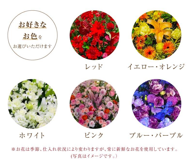 お花の色はレッド系、ピンク系、イエロー・オレンジ系、ホワイト系、ブルー・パープル系からお選びいただけます