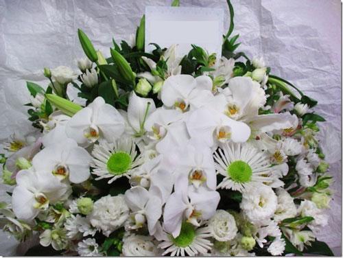 胡蝶蘭入り供花