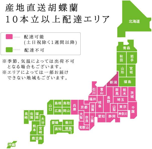 産地直送10本立ち胡蝶蘭 配送地域地図
