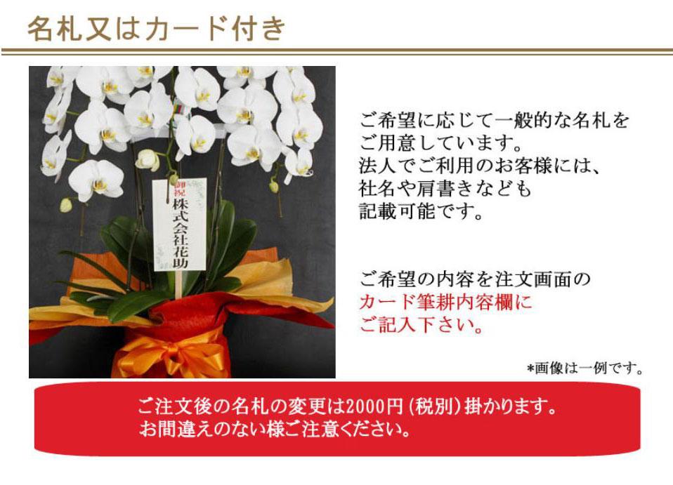 お花に無料で名札、カードが付くのでギフトにも安心