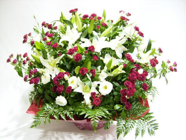 送料無料 お祝いアレンジメント花