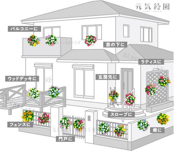 m_image4.jpg