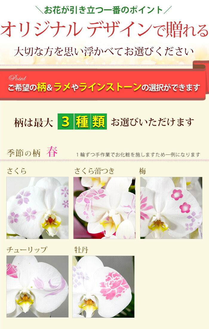 rlsa102kesyo_01a.jpg