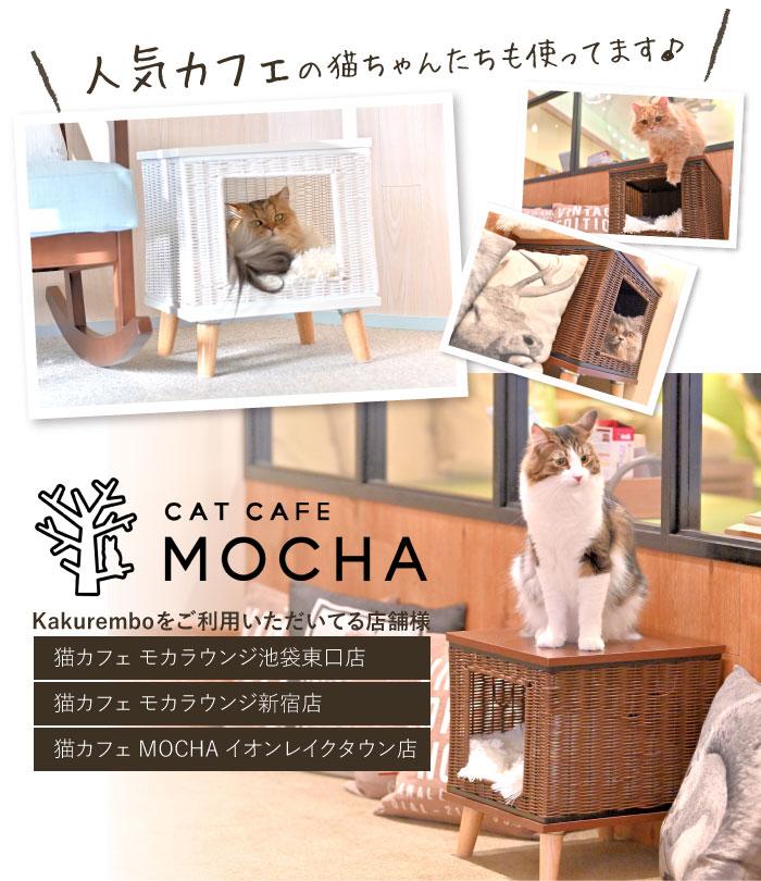 猫カフェMOCHAモカ