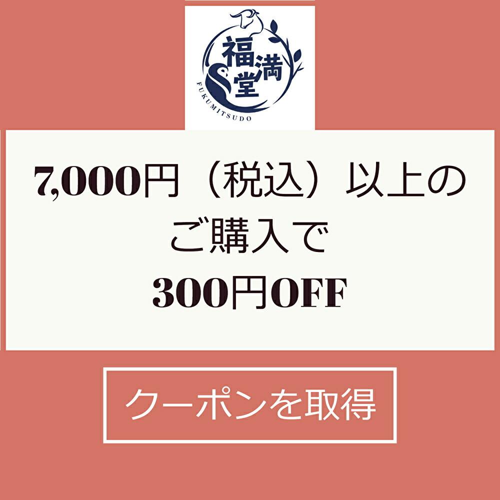 7,000円以上300円引きクーポン
