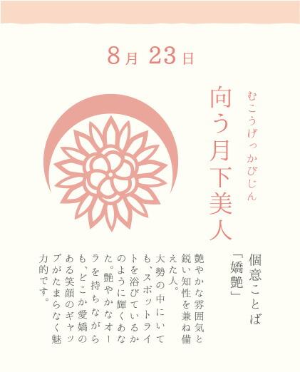 8月23日 向う月下美人(むこうげっかびじん)