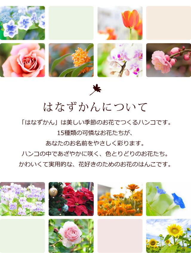 はなずかんについて「はなずかん」は美しい季節のお花でつくるハンコです。15種類の可憐なお花たちが、あなたのお名前をやさしく彩ります。ハンコの中であざやかに咲く、色とりどりのお花たち。かわいくて実用的な、花好きのためのお花のはんこです。