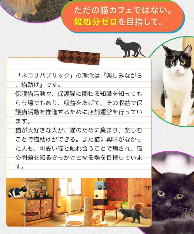 「ネコリパブリック」の理念は『楽しみながら、猫助け』です。保護猫活動や、保護猫に関わる知識を知ってもらう場でもあり、収益をあげて、その収益で保護猫活動を推進するために店舗運営を行っています。猫が大好きな人が、猫のために集まり、楽しむことで猫助けができる。また猫に興味がなかった人も、可愛い猫と触れ合うことで癒され、猫の問題を知るきっかけとなる場を目指しています。