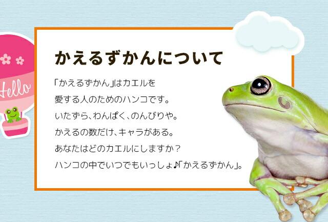 かえるずかんについて 「かえるずかん」はカエルを愛する人のためのハンコです。いたずら、わんぱく、のんびりや。かえるの数だけ、キャラがある。あなたはどのカエルにしますか?ハンコの中でいつでもいっしょ♪「かえるずかん」。