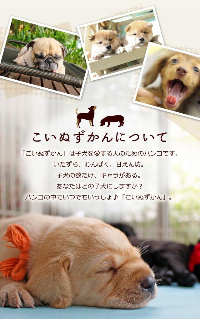こいぬずかんについて「こいぬずかん」は子犬を愛する人のためのハンコです。