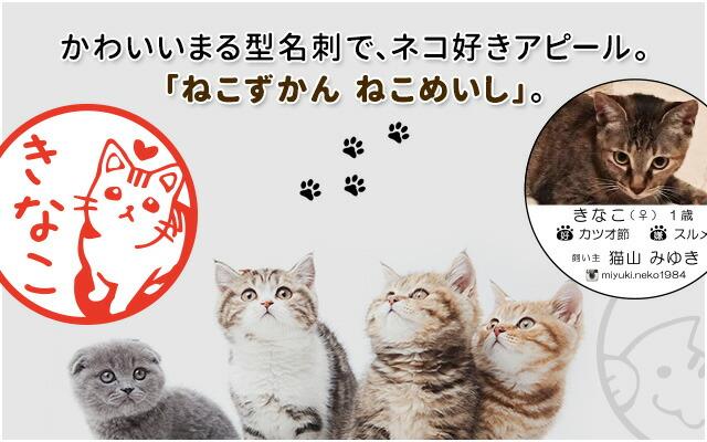 かわいいまる型名刺で、ネコ好きアピール。「ねこずかん ねこめいし」。