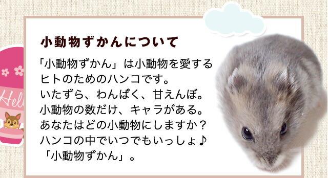小動物ずかんについて「小動物ずかん」は小動物を愛するヒトのためのハンコです。いたずら、わんぱく、甘えんぼ。小動物の数だけ、キャラがある。あなたはどの小動物にしますか?ハンコの中でいつでもいっしょ♪「小動物ずかん」。