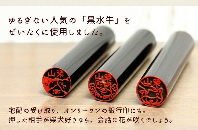 上品な漆黒の印材を使った黒水牛タイプ。