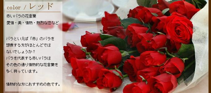 rose-bouquet3.jpg