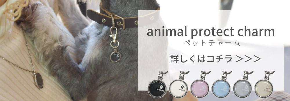 animal protect charm