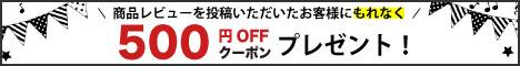 レビューを書いて500円オフクーポン