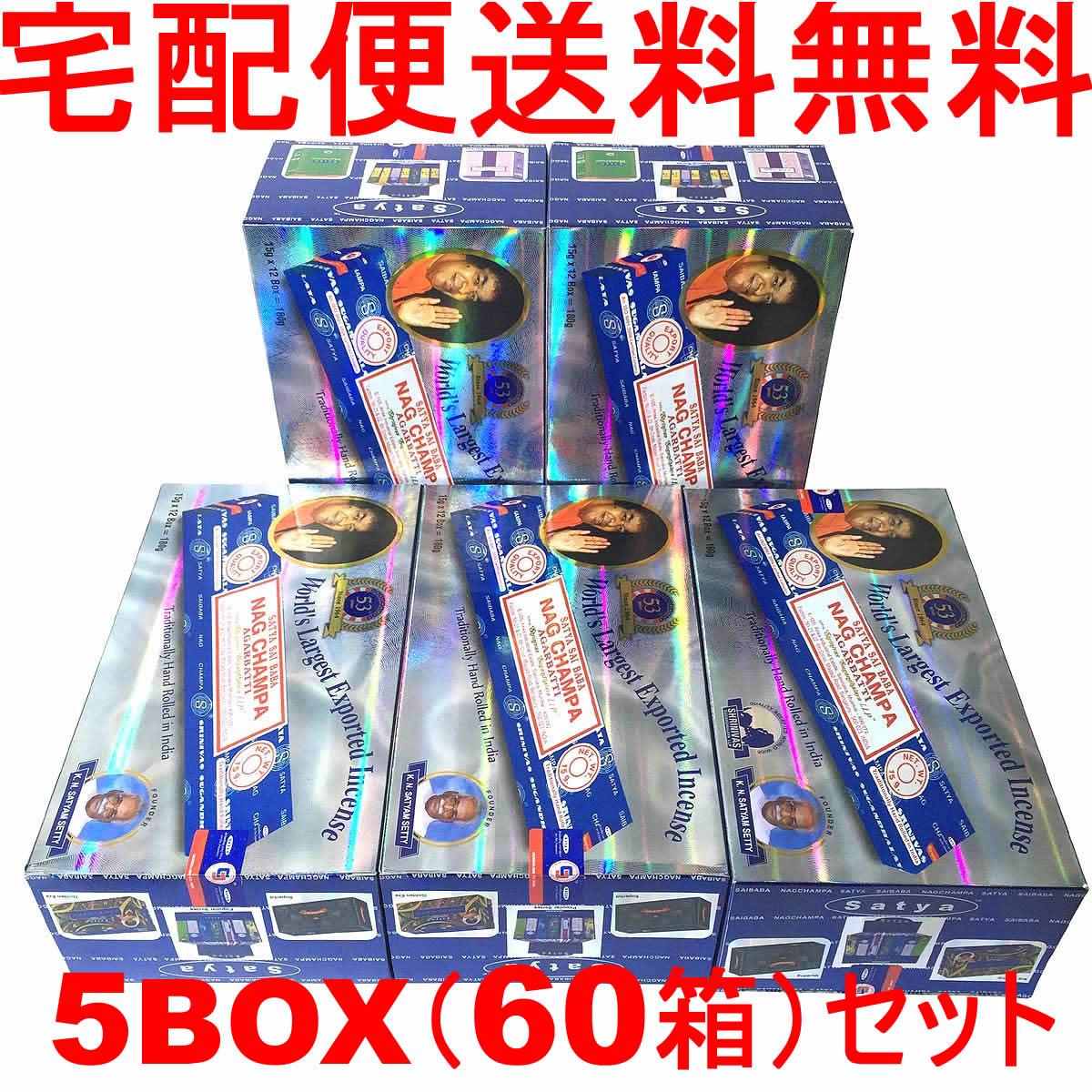 5BOX(60箱)送料無料