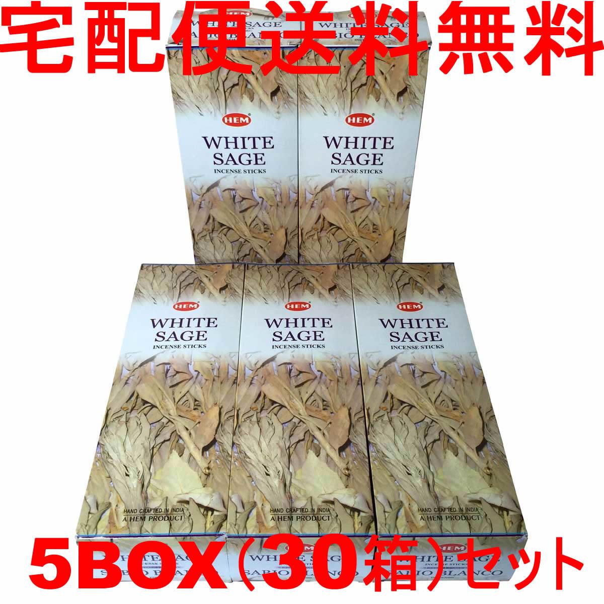 5BOX(36箱)送料無料