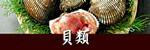 瀬戸内海の貝類